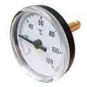 Termometr 63mm 0-120'C osiowy tył